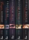 Vampire Academy Series: Volumes 1 Thru 6: Vampire Academy / Frostbite / Shadow Kiss / Blood Promise / Spirit Bound / Last Sacrifice - Richelle Mead