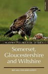 Where To Watch Birds In Somerset, Gloucestershire And Wiltshire (Where To Watch Birds) - Ken Hall, John Govett