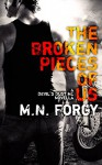 The Broken Pieces Of Us (The Devil's Dust) - M. N. Forgy