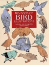 Big Book of Bird Illustrations - Maggie Kate