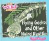 Flying Geckos and Other Weird Reptiles - Carmen Bredeson