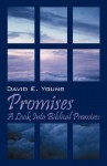 Promises: A Look Into Biblical Promises - David E. Young
