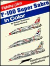 F-100 Super Sabre in Color - Robert Robinson, David W. Menard