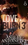 Love Burn 3 - Ashley Antoinette