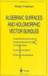 Algebraic Surfaces and Holomorphic Vector Bundles (Universitext) - Robert Friedman