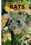 Rats - Sue Fox