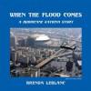 When the Flood Comes : A Hurricane Katrina Story - Brenda LeBlanc