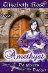 Amethyst - Book 4 (Daughters of the Dagger Series) - Elizabeth Rose