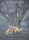 Enfold Me - A Novel of Post-Israel - Steven Greenberg
