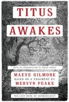 Titus Awakes: The Lost Book of Gormenghast - Maeve Gilmore, Mervyn Peake, Brian Sibley