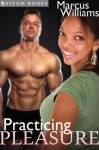 Practicing Pleasure - A Sexy Interracial BWWM Office Sex Erotic Story from Steam Books - Steam Books, Marcus Williams
