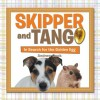 Skipper and Tango: In Search for the Golden Egg - Andrew Cook
