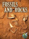 Fossils and Rocks - Kimberly Hutmacher