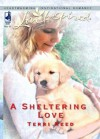 A Sheltering Love (Mills & Boon Love Inspired) - Terri Reed