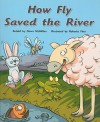 Flying Colors Ora How Fly Saved The River - Steck-Vaughn Company, McMillan