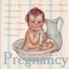 The Little Big Book of Pregnancy - Lena Tabori