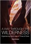 A Way Through the Wilderness: Experiencing God's Help in Times of Crisis - Paula Gooder