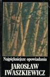 Najpiękniesze opowiadania - Jarosław Iwaszkiewicz
