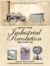 What The Industrial Revolution Did For Us - Gavin Weightman