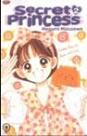 Secret Princess, vol. 2 - Megumi Mizusawa