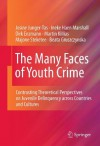 The Many Faces of Youth Crime: Contrasting Theoretical Perspectives on Juvenile Delinquency across Countries and Cultures - Josine Junger-Tas, Ineke Haen Marshall, Dirk Enzmann, Martin Killias, Majone Steketee, Beata Gruszczynska