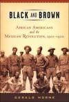 Black and Brown - Gerald Horne