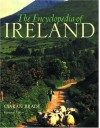 The Encyclopedia of Ireland: An A-Z Guide to It's People, Places, History, and Culture - Ciaran Brady