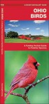 Ohio Birds: A Folding Pocket Guide to Familiar Species - James Kavanagh