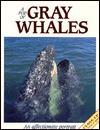 A Pod of Gray Whales: An Affectionate Portrait - Francois Gohier
