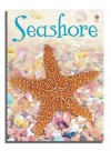 Seashore (Usborne Beginners) - Lucy Bowman