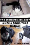 Two Brothers and a Baby (Lance & Ringo Tails, #5) - Bria Burton