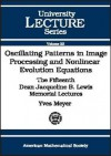 Oscillating Patterns in Image Processing and Nonlinear Evolution Equations: The Fifteenth Dean Jacqueline B. Lewis Memorial Lectures - Yves Meyer