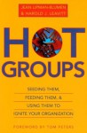 Hot Groups: Seeding Them, Feeding Them, and Using Them to Ignite Your Organization - Jean Lipman-Blumen, Harold J. Leavitt