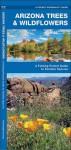 Arizona Trees & Wildflowers: A Folding Pocket Guide to Familiar Species - James Kavanagh, Raymond Leung