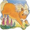 Pocket Pony (Pocket Pals Board Books) - Pam Adams