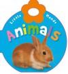 Little Hands Animals - Katie Cox