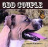 Odd Couple - Susannah Marriott