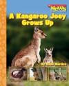 A Kangaroo Joey Grows Up - Katie Marsico