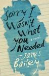 Sorry I Wasn't What You Needed - James Bailey