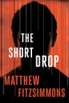 The Gibson Vaughn Series (2 Book Series) - Matthew FitzSimmons