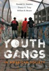 Youth Gangs in American Society - Randall G. Shelden, Sharon K. Tracy, William B. Brown