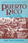 Puerto Rico: The Four-Storeyed Country and Other Essays - José Luis González