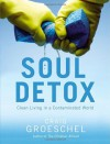 Soul Detox: Clean Living in a Contaminated World - Craig Groeschel