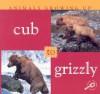 Cub to Grizzly - Jason Cooper, Lynn M. Stone