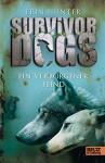 Survivor Dogs. Ein verborgener Feind: Band 2 - Erin Hunter, Elsbeth Ranke