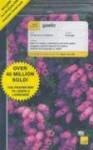 Teach Yourself Gaelic: Complete Audio CD Program - Boyd Robertson, Iain Taylor