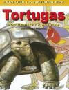 Tortugas: Por Dentro y Por Fuera - Gillian Houghton, Studio Stalio, Tomás González