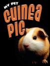 Guinea Pig - Jill Foran