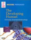 The Developing Human: Clinically Oriented Embryology - Keith L. Moore