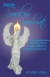 From Soul to Soulmate: Bridges from Near-Death Experience Wisdom - Jody Long